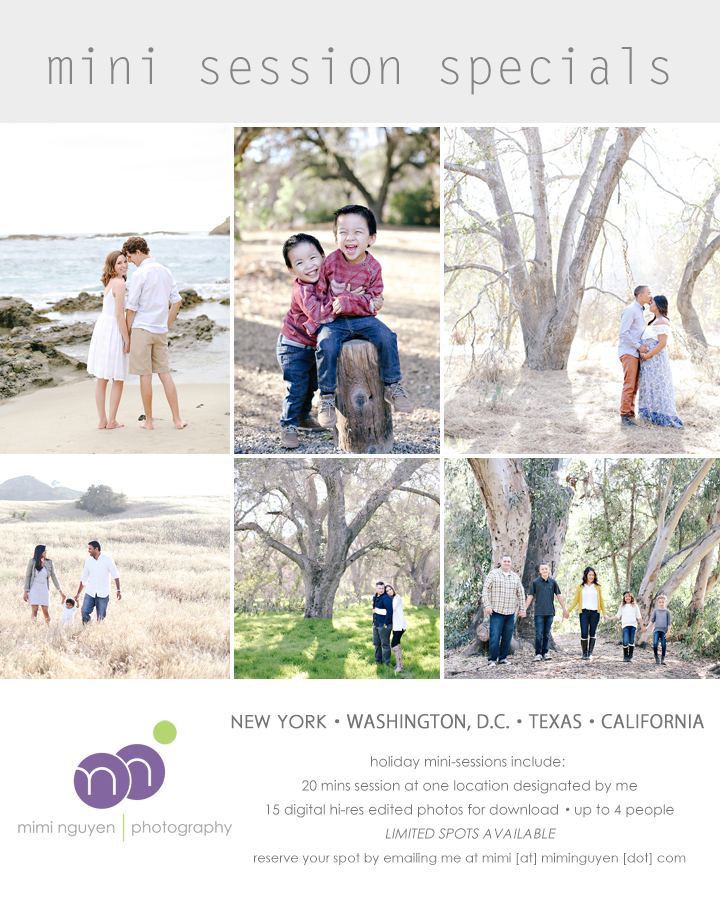 cb8ef80b02d8b fall is right around the corner and i will be offering the ever so popular  holiday mini session specials this year in orange county